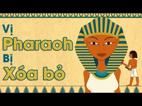 [TED Ed song ngữ] Vị pharaoh bị xóa bỏ - Kate Narev