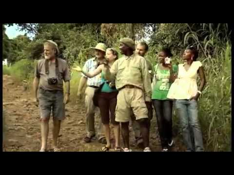 IFAW   Safari