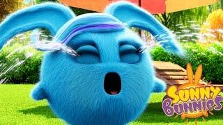 Cartoons for Children | Sunny Bunnies SUNNY BUNNIES CRYING BUNNY | Funny Cartoons For Children