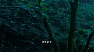 教えてください/Nahoko Kakiage/書上奈朋子