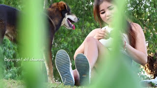 Wow! Pretty girl playing with Puppies on the Field and Giving Special food -  Clip cute Dogs
