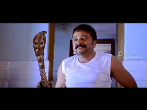 Malayalam Movie   Sarkar Dada Malayalam Movie   Jayaram Teases Navya Nair