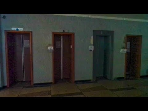 Техобслуживание лифтов в административном здании