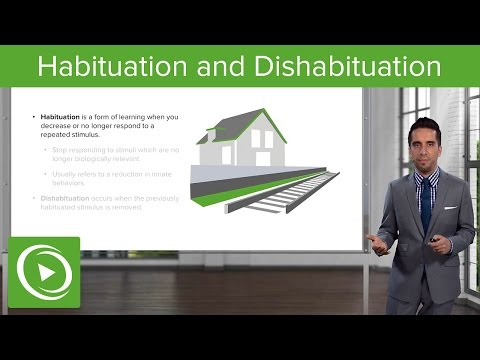 Habituation and Dishabituation – Psychology | Medical Video