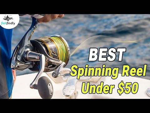 Best Spinning Reel Under $50 – 2020 Top Models Reviewed!