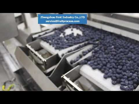 Blueberry Packing Machine,Blueberry Processing Equipment