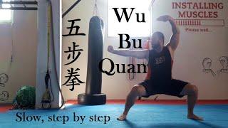 Wu Bu Quan (五步拳) - slow version