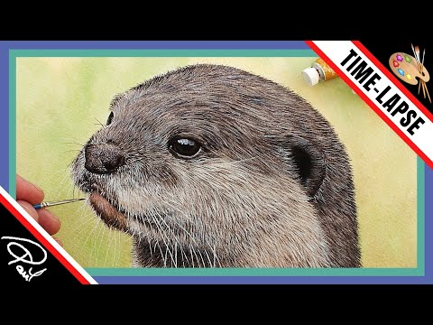 Watercolour Painting Lessons –  How To Paint an Otter – Speed Painting