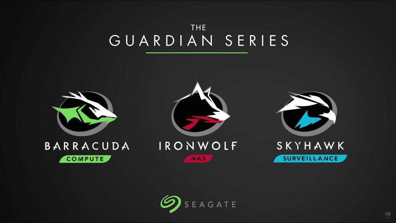 Seagate Firecuda Barracuda Pro Hard Drive Gamers Review Youtube Hardisk Skyhawlk 1tb