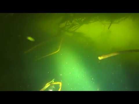 Подводная охота - СОМ под крышей