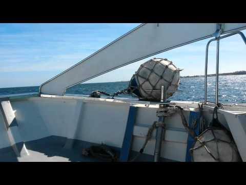 Corralejo glass bottom boat to los lobos fuerteventura