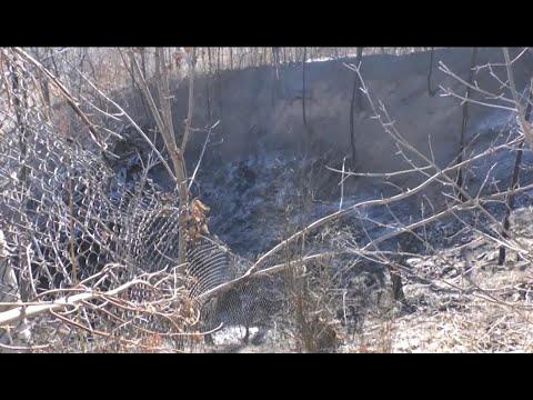 АТН Харьков: Пожар на свалке  - 09.12.2020