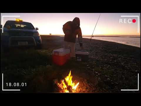 Basic Fishing New Zealand - Kahawai