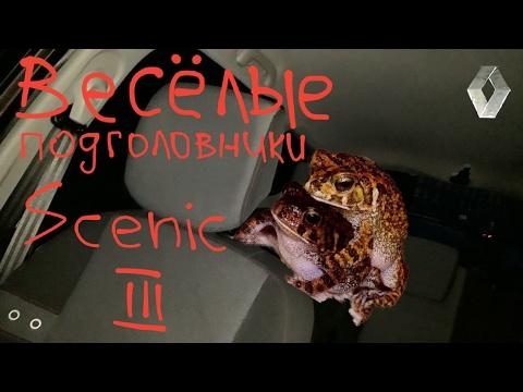 Scenic 3 скрип стук подголовников Меган 3