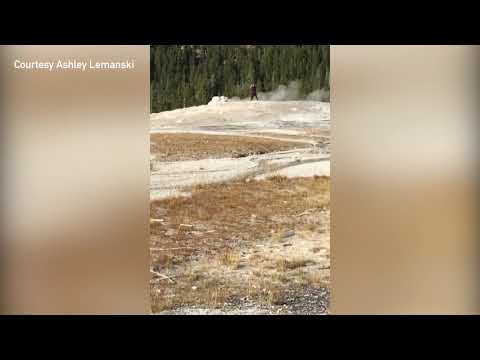 Man cited after walking on the cone of Old Faithful in Yellowstone National Park