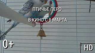 АФИША К ФИЛЬМУ ПТИЧЬЕ ПЕРО 0+