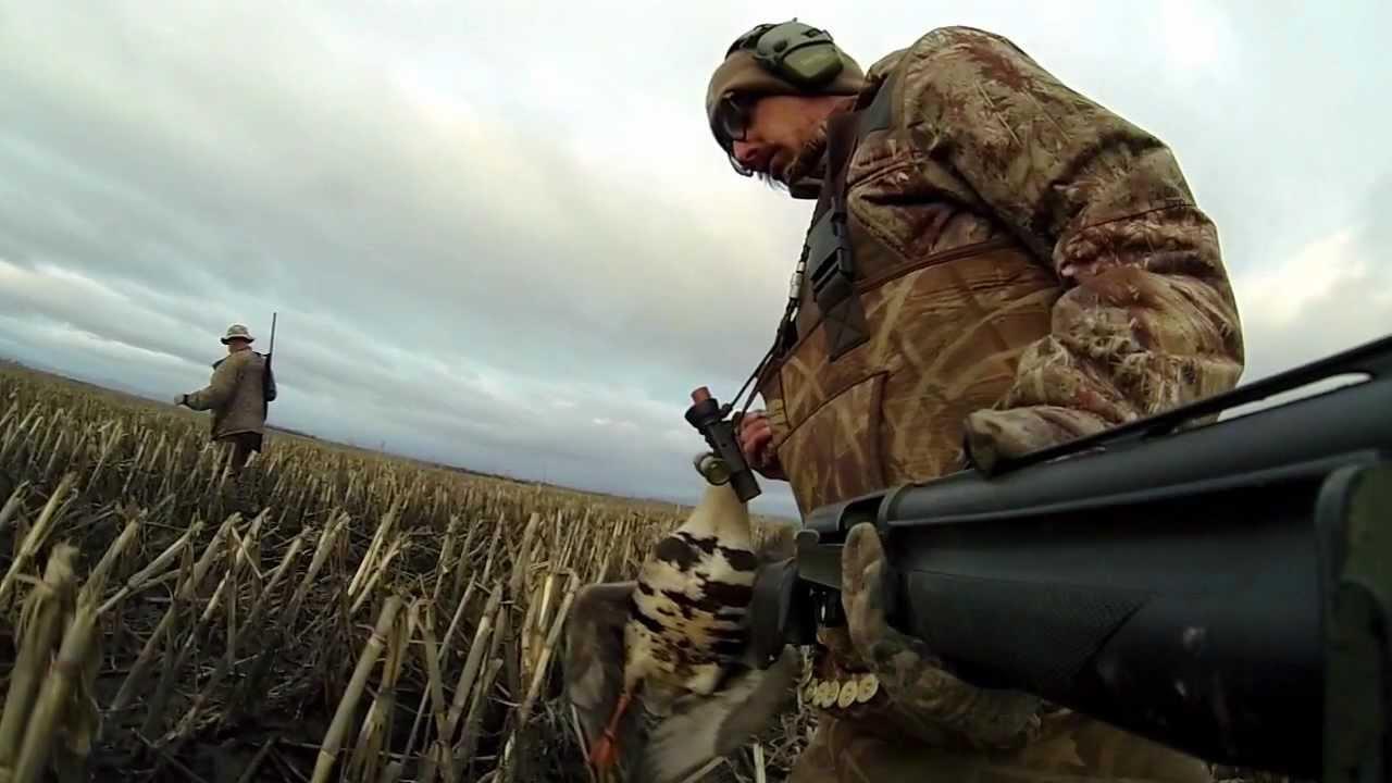 GoPro Waterfowl Hunting - YouTube