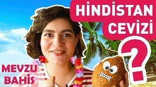 Hindistan Cevizi - Mevzubahis #1 | Yemek.com
