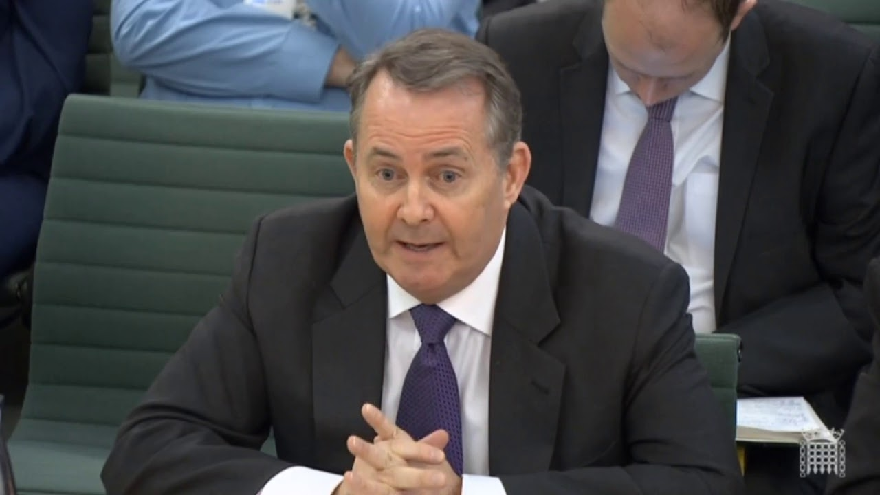 Liam Fox appearing at the International Trade committee on 6 February