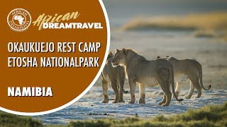 Okaukuejo Camp im Etosha Nationalpark | African Dreamtravel