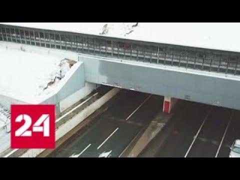Названа причина обвала в Тушинском тоннеле - Россия 24