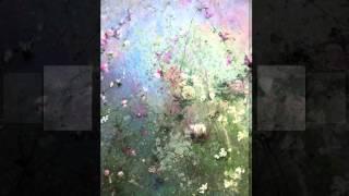 """Carlos Botto. """" Fantasía, op. 25 / Con fluídez """" . Luis Orlandini. Pinturas de Lawrence Amélie."""