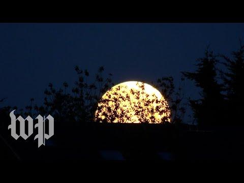 Blood moon glows around the world