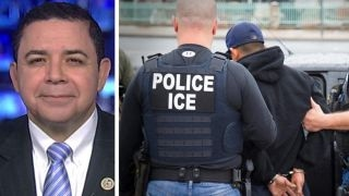 Rep  Cuellar  Illegals who break law need to be deported