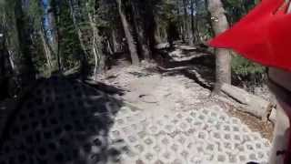 Twilight Zone - Mammoth Mountain Bike Park