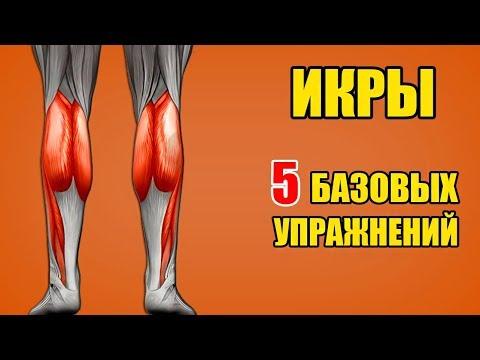 ИКРЫ. 5 базовых упражнений. Техника / Биомеханика - Икроножные мышцы