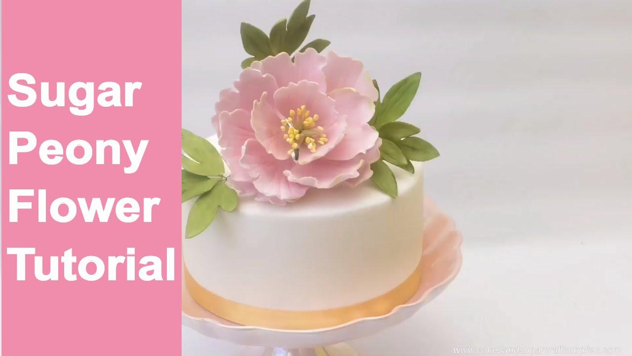 Open gumpaste peony tutorial! – renee conner cake design.