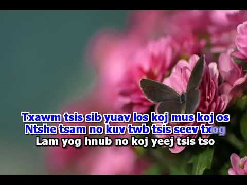 Tuam Yaj - (GIRL) Khuv Xim Tsis Tau Deev (Karaoke) thumbnail