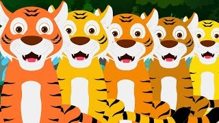 Five Big Tigers | Tigers