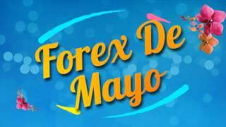 Forexworld Australia | Forex De Mayo 2017
