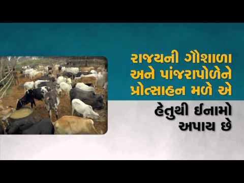 IMPORTANCE OF ANIMAL HUSBANDRY IN ECONOMY OF STATE