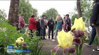 Почем тепло для народа: почему жители Башкирии платят за отопление в мае?