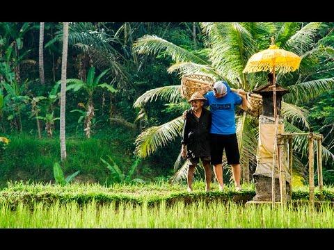 Bali Road Trip in 4K! | DEVINSUPERTRAMP