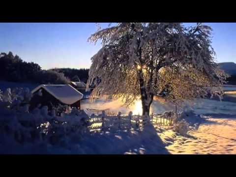 Зимние шины для рено логан в москве