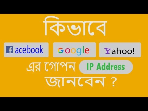 How To Get Ip Address From Domain Name