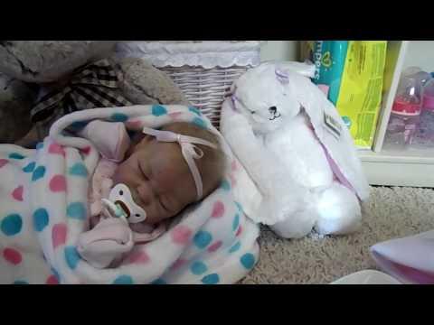 Reborn Baby Haul For Quinlynn