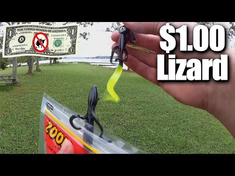 Fishing With A $1.00 Zoom Lizard - Walmart Clearance Bass Fishing