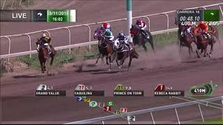 Vidéo de la course PMU PREMIO DODONE H