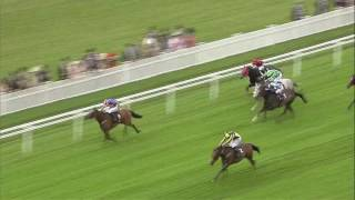 2016 Prince of Wales's Stakes - My Dream Boat - Racing UK