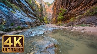 Zion National Park. Autumn - 4K Nature Documentary Film