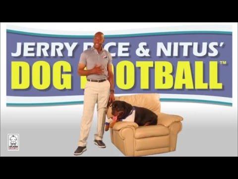 Jerry Rice & Nitus