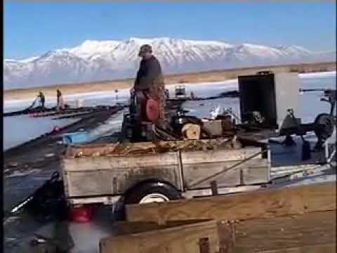 Utah Lake Carp Removal