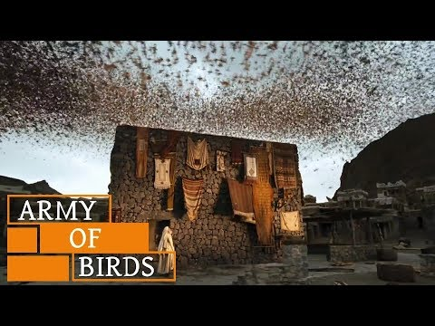When Birds Defend KAABA (House of GOD) || Story of Ababil Birds and The Elephant