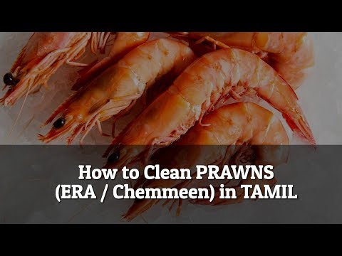 How to clean Era / Chemmeen / Prawns (King Prawns) in Tamil