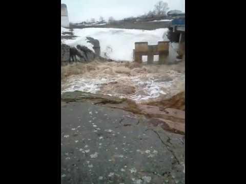 Село Каменка акмолинской области сандыктауского района
