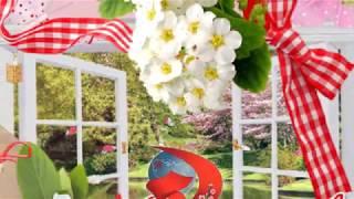 1 Мая Праздник  Красивое видео поздравление Музыкальная открытка